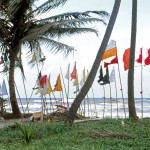 Evidence of Indian Culture: Hindu Prayer Flags, Manzanilla Beach, Trinidad
